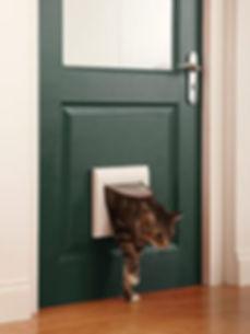 Cat flap installed