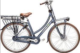 Female e-bike