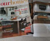 Basement Beauty - Our Homes Magazine Ottawa