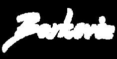 barkoviz_logo_white.png