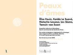 Elise Fouin Exposition Peau d'Ame Next Level Galerie Paris 2012