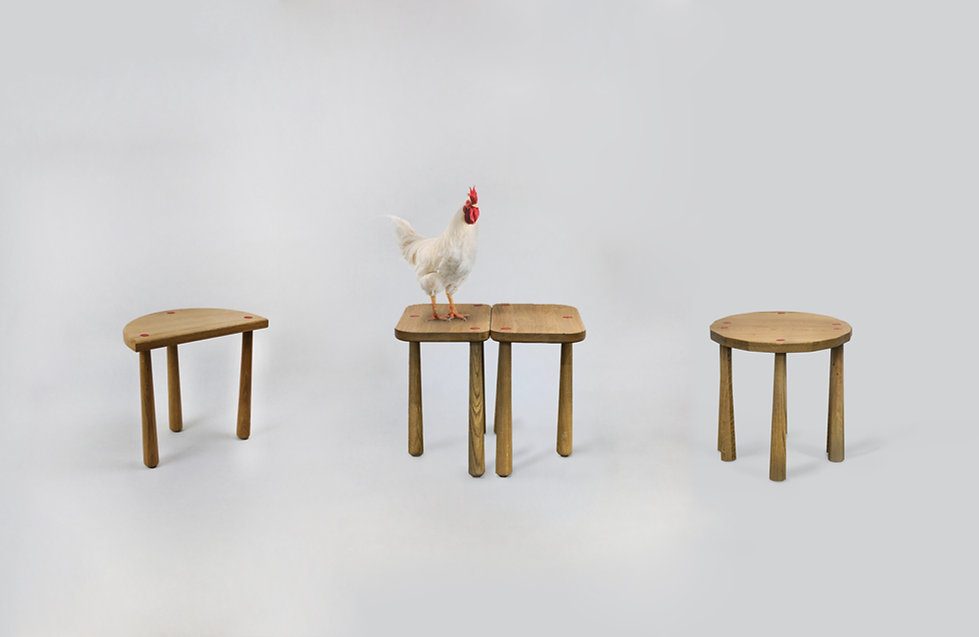 trio vacher + poule.jpg