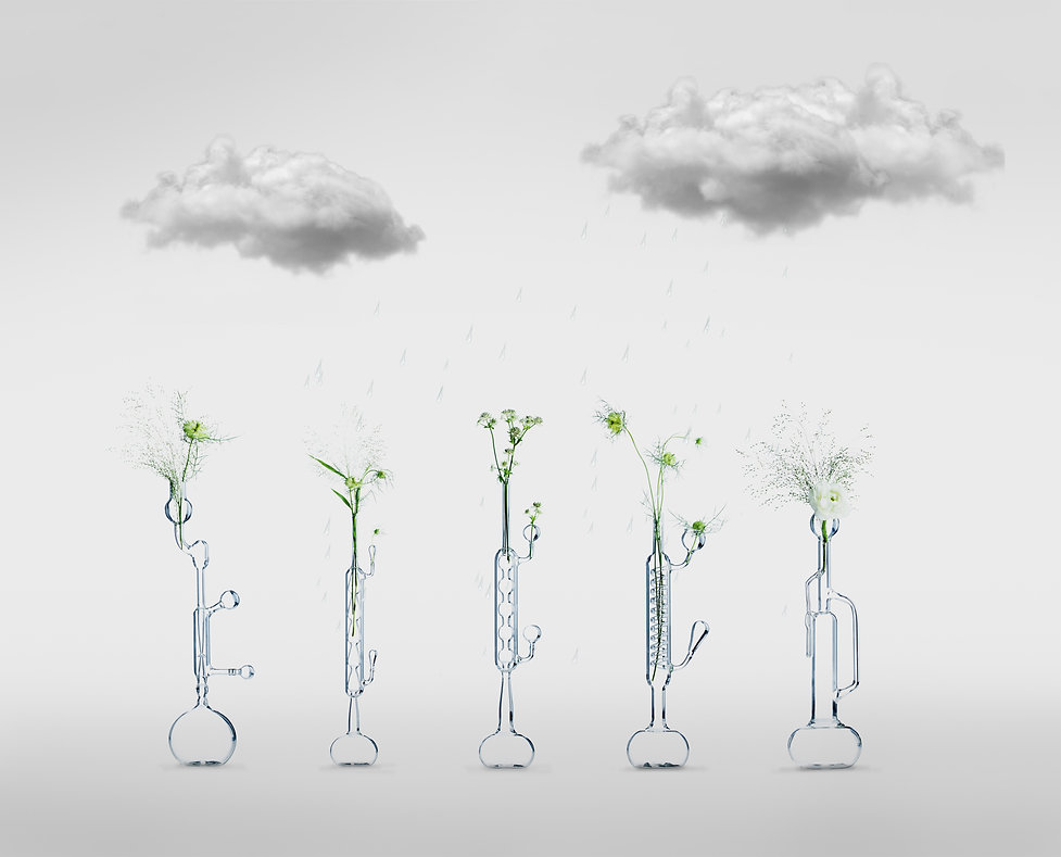 Montage Chimisterie - vases.jpg