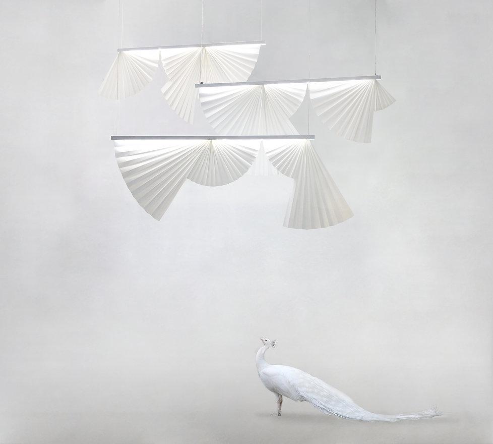 Cocardes + paon blanc.jpg