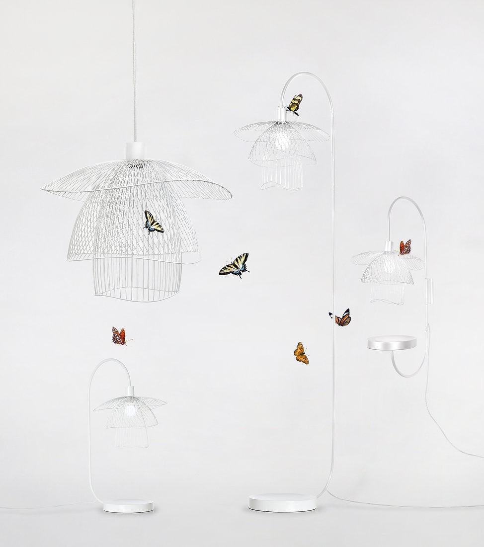 famille papillon entiere BLANC.jpg