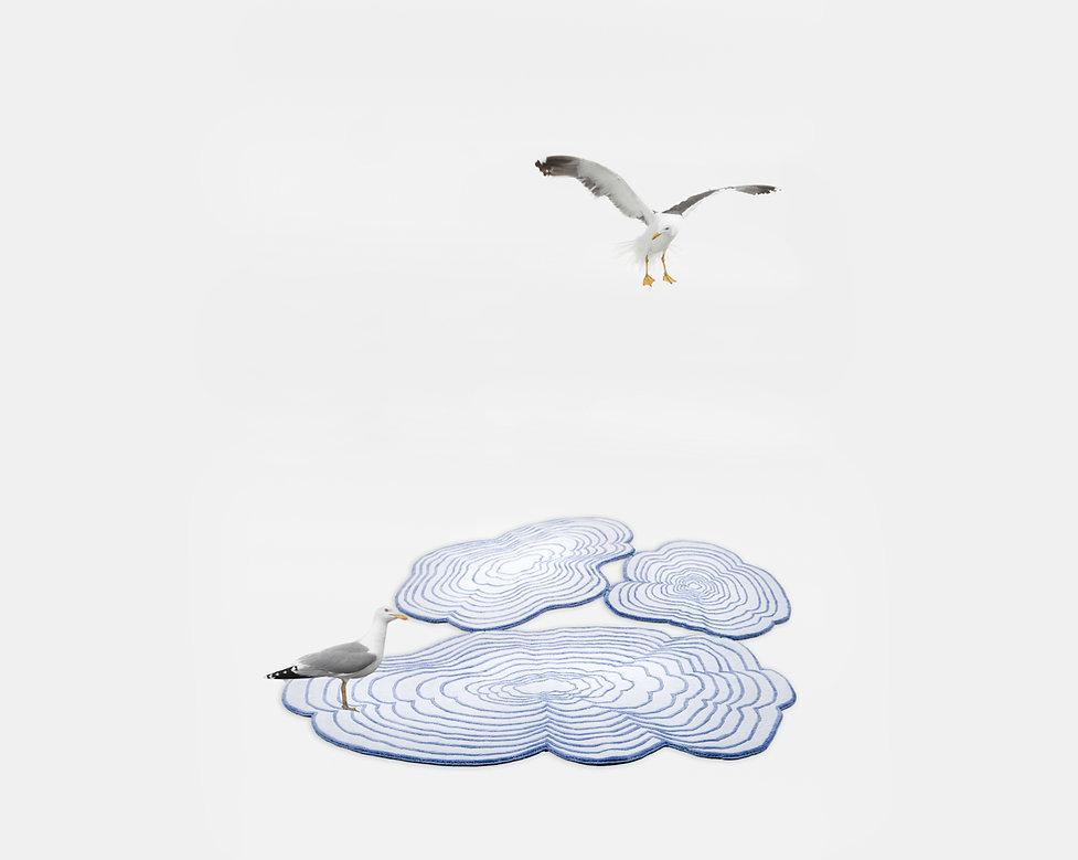 Tapis Cloud bleu + mouette horizontal.jp