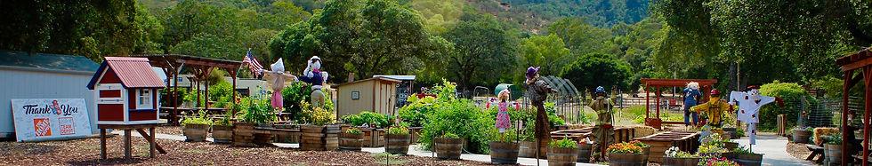 Tug McGraw Brain Food Garden