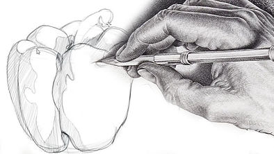Hand drawin