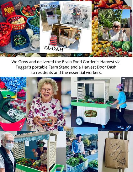 Tug McGraw 2020 Programs Brain Food Gard