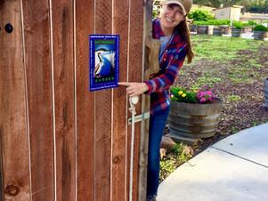 Napa's Bay-Friendly Garden Tours Discovers Tug's Secret Brain Food Garden