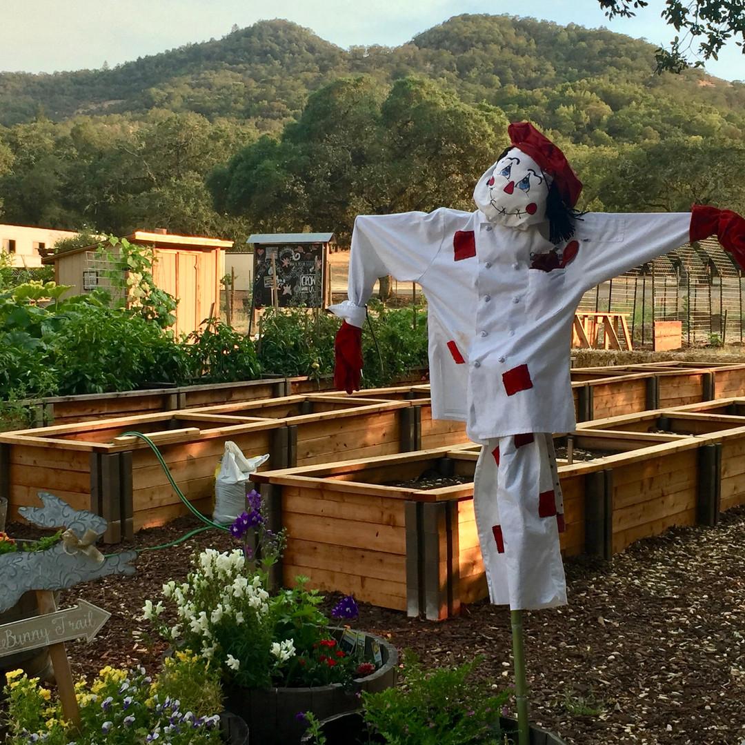 Tug McGraw-Brain Food Garden-Brain Wellness-Program-Scarecrows-Tug McGraw Foundation-Yountville.jpeg