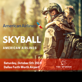 SkyBall American Airlines