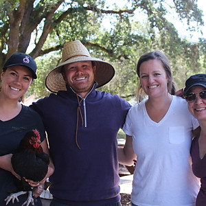 Miner Family Vineyards Volunteer Day