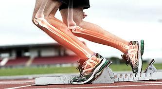 SPORTS INJURIES - Optimum Chiropractic & Fitness