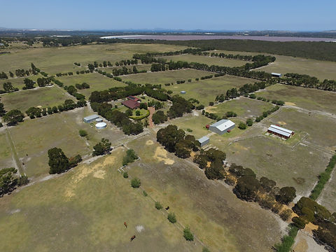 Esperance Horse Agistment in Western Australia