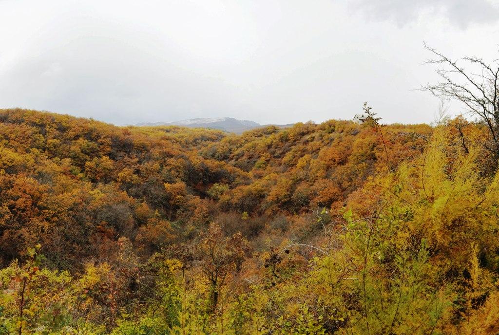 Республика  Крым, 2015 г.