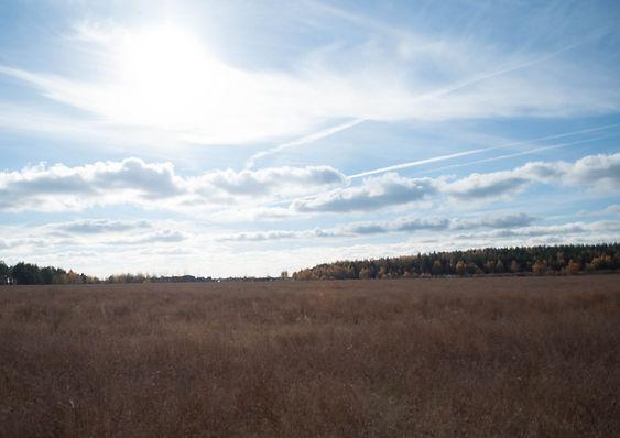 Инженерно-экологические изыскания Московская область