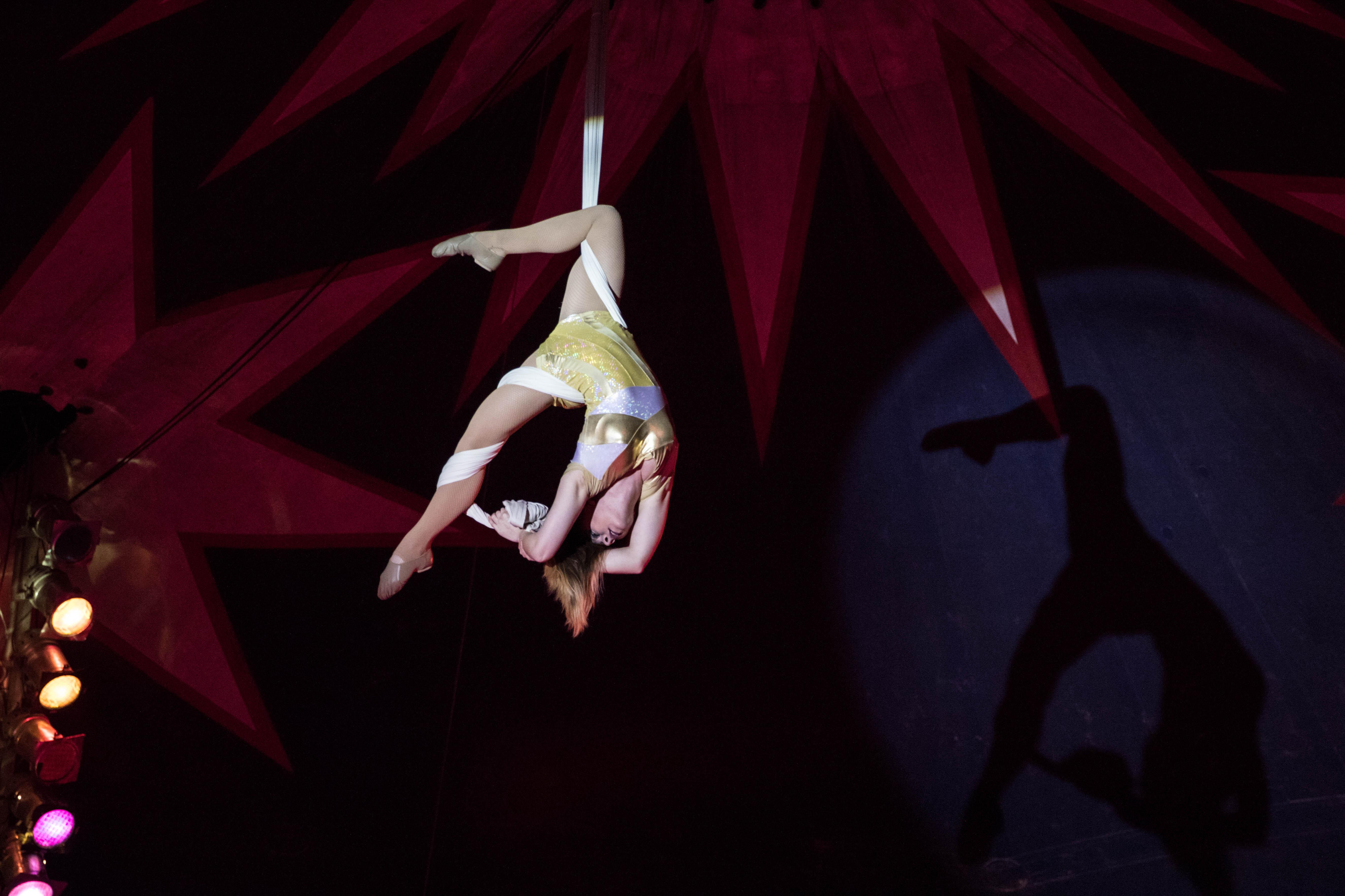 Circus Belly 43 (1 von 1)