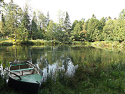 view of the pond and rowboat