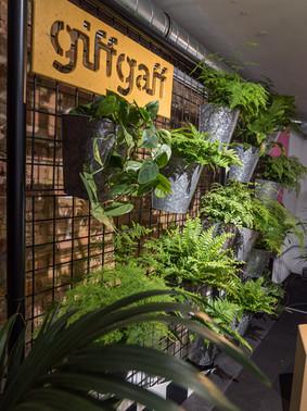 GIFF GAFF SHOP | ART DIRECTOR