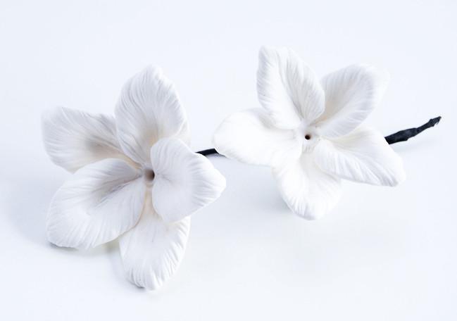 LATELIER-FIVE-ALEXANDER-MCQWEEN-PROPS-FLOWERS-LEATHER-LASERCUT-PARASKIVA (1).jpg