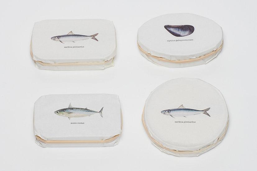 Variety Taste Pack of 4: Taste & Beauty Sardines, Mussels & Bullet Tuna
