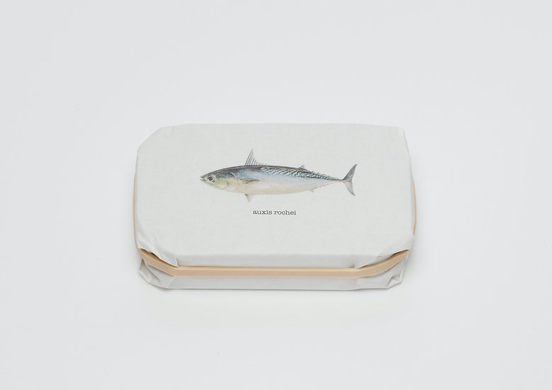 3-Pack Bullet Tuna Filets 'auxis rochei' (vintage 2018)