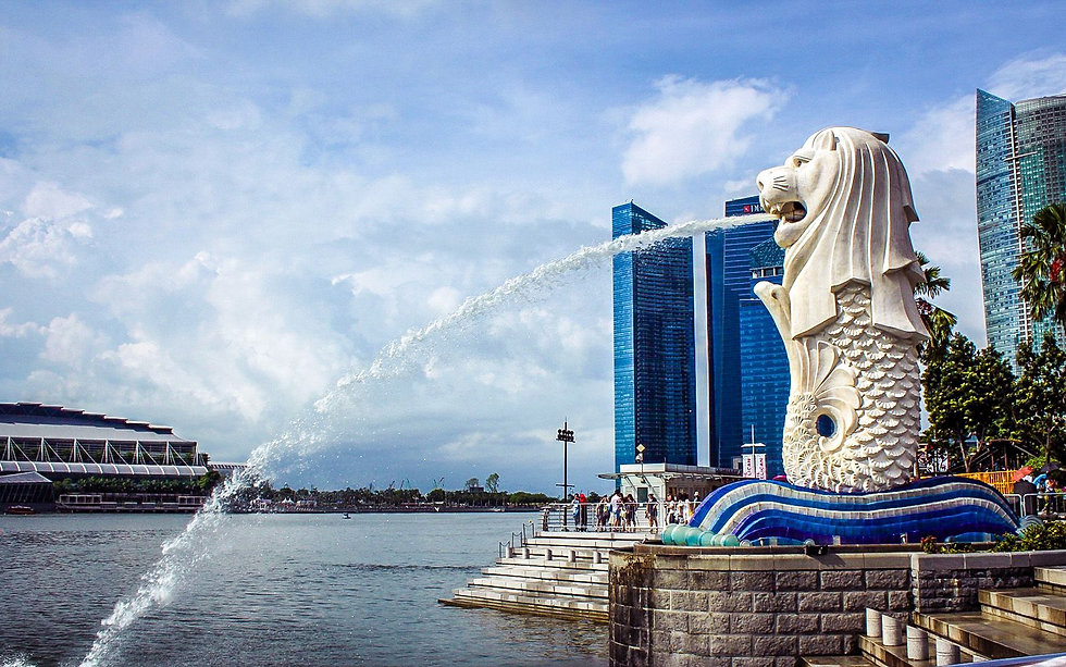 merlion pic background.jpg