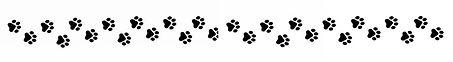 0 divider paw printz.jpg