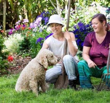 Bright Smile tops the NZ Gardener Awards