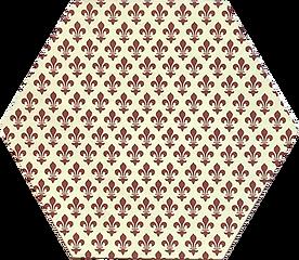 6 in hex brown fleurs.png