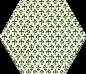 6 in hex green fleurs.png