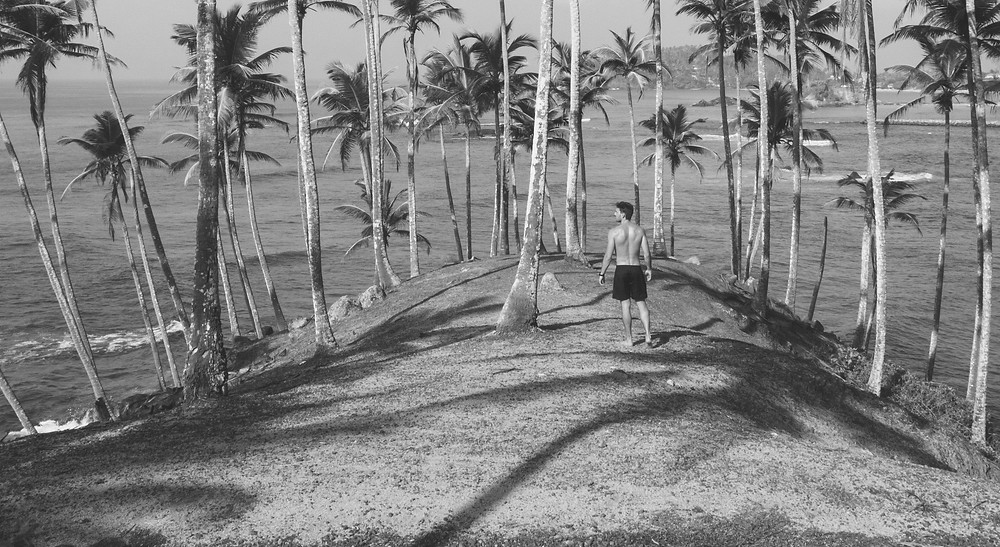 Man palm trees ocean black white gray scale beach