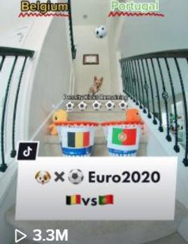 Euro Belgium vs Portugal 3.3.JPG