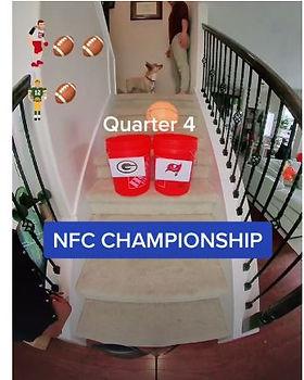 1.3 NFC championship.JPG