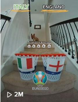 Euro Cup.JPG