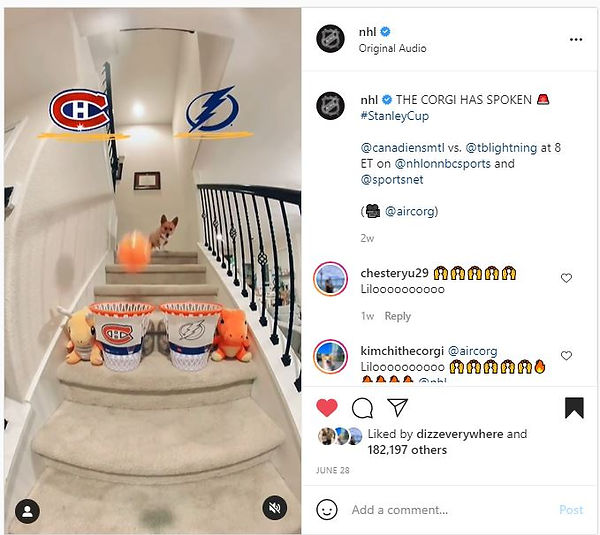 NHL Feature.JPG