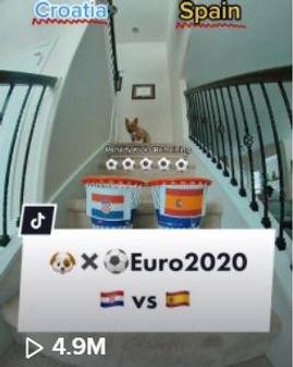 Spain 4.9MM.JPG