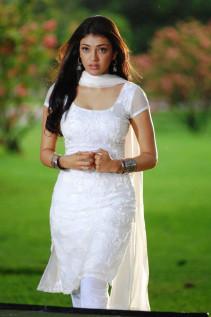 Ivory Princess