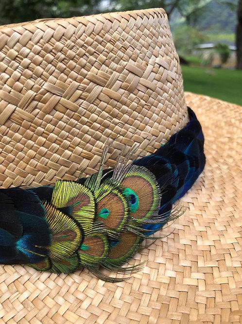 Peacock E.Blue
