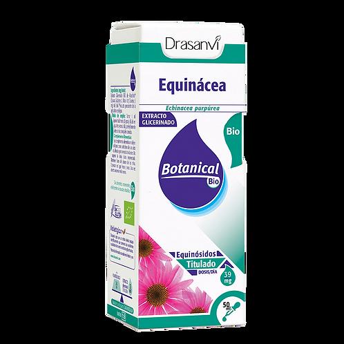 Botanical Bio - Equinacea