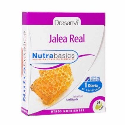 JALEA REAL NUTRABASICS - 30PERLAS. 1000 MGS. DRASANVI