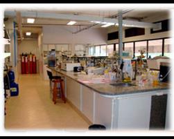 labmassa lab.png