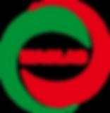 MAGLAB_Logo.png