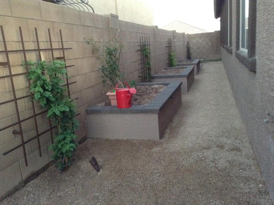 Vegtable Gardens