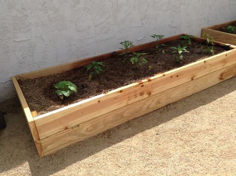 Wood Planters