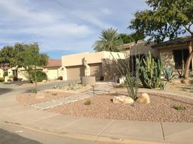 Desert Landscape (1).jpg
