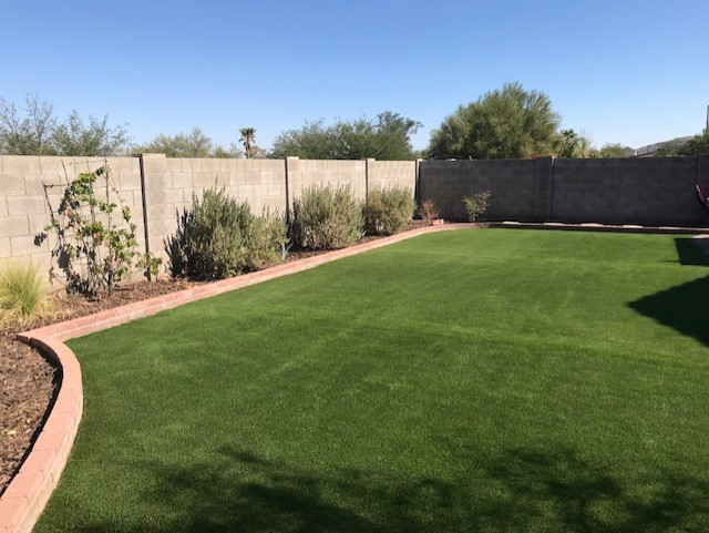Large Artificial Turf Backyard
