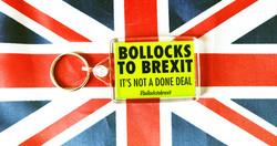Bollocks To Brexit Keyring (2)