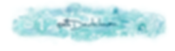 illustratedwebsiteBanner5.png
